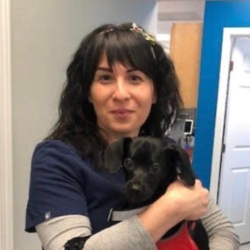Jess, Veterinary Support Staff