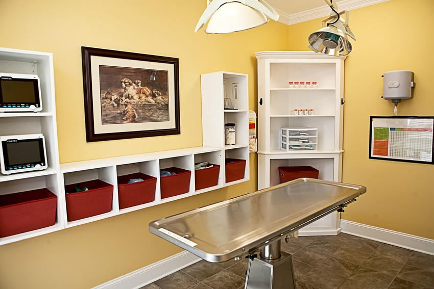 Our State Of The Art Surgical Suite Is Well Equipped And Soothing.